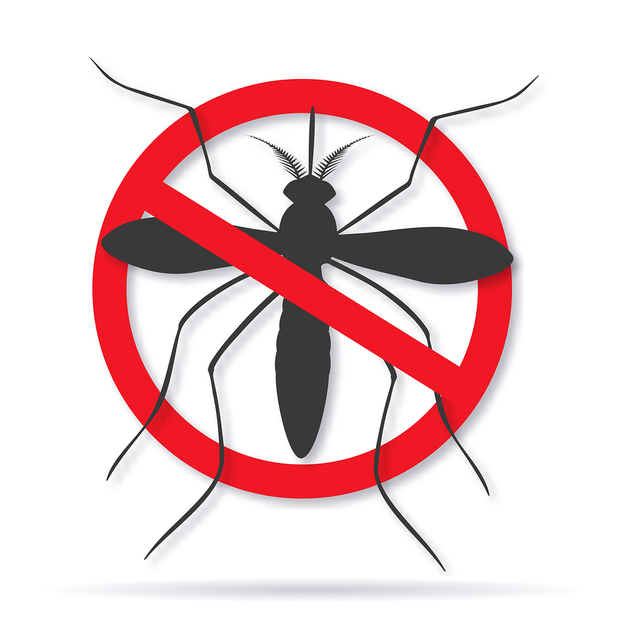 Choosing an Insect Repellent