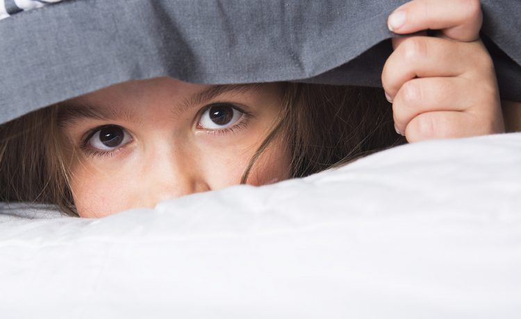 Childhood shyness is common and it causes concern for some parents. A child may be shy because of many reasons, such as, harsh living situations, neglected or rejected. In some […]